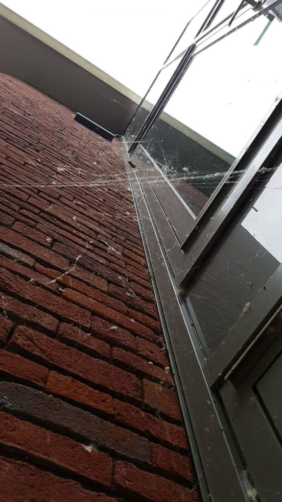 Spiderbuster Nederland